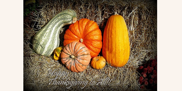 The History behind Thanksgiving